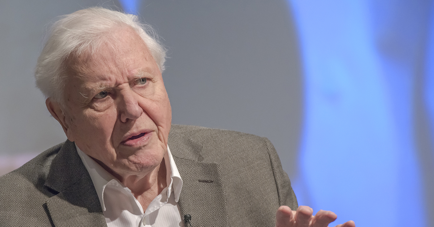 An Open Letter to Sir David Attenborough: Why Planet Earth Needs You to Go Vegan