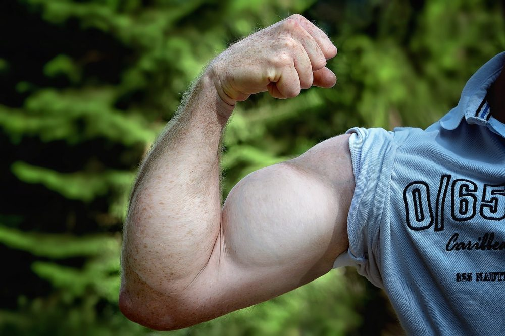 muscles-811479_1280