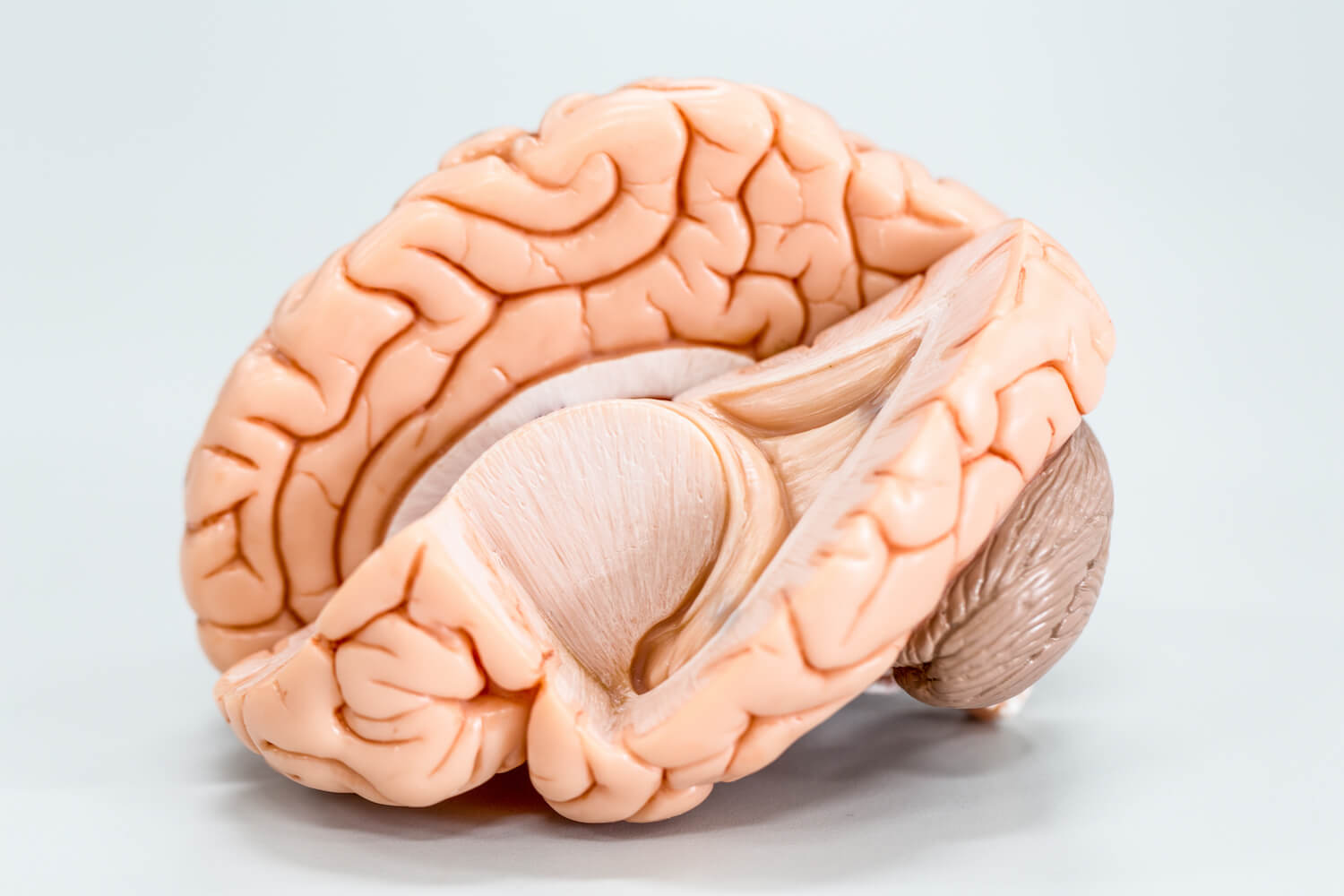 Can You Prevent Alzheimer's With a Vegan Diet?