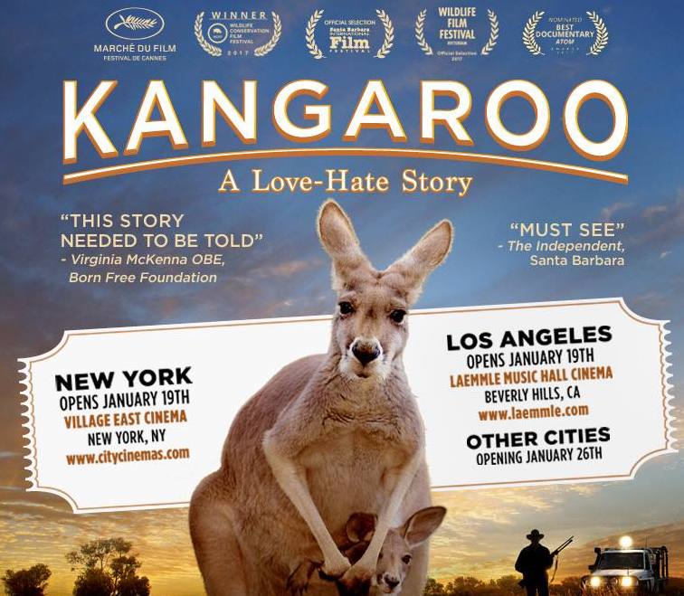 kangaroo the movie