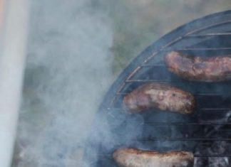 Meat and Dairy Consumption Must Be Reduced to Stop Climate Change, Say European Scientists