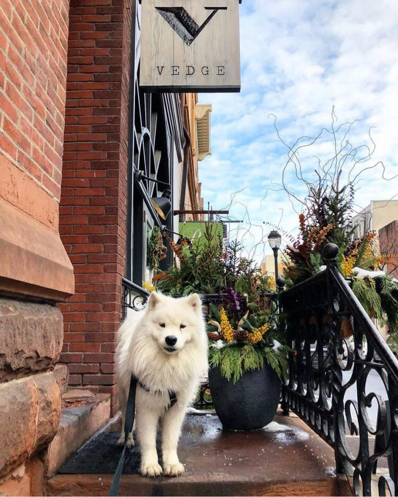 DC Gets New Vegan Street Food-Inspired Restaurant