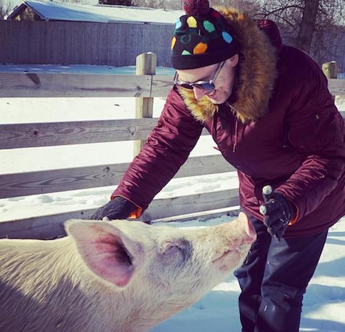Alan Cumming Pig