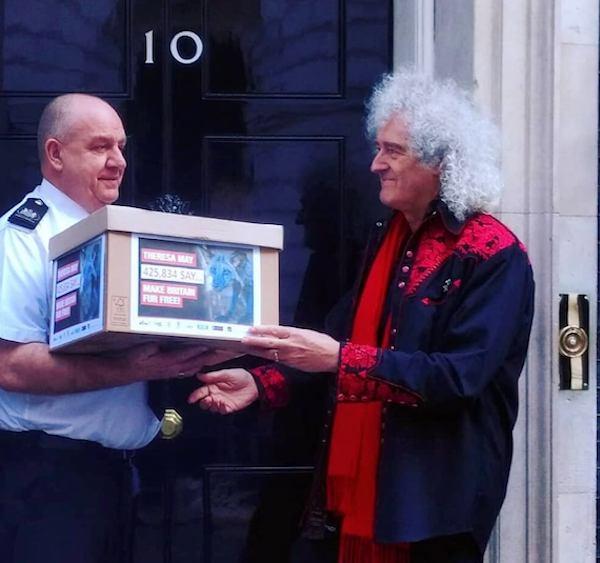 Queen Guitarist