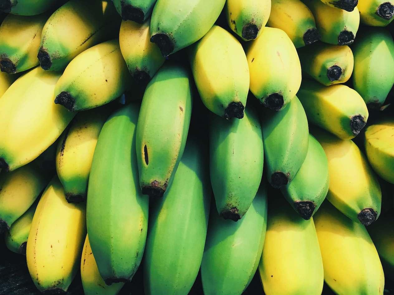 Eco-Friendly Vegan Banana Fabric Fashion Brand Wins Sustainability Award