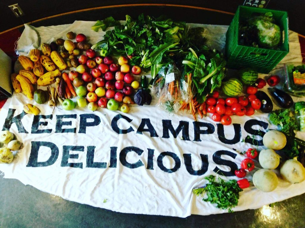 Students in Canada Are Creating Sustainable Vegan Meals From Food Waste