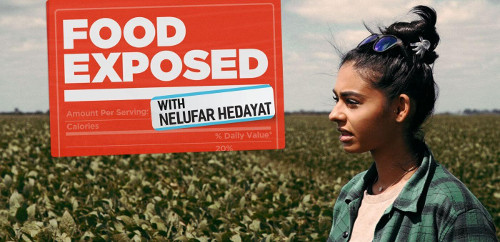 New-8 Part Vegan Documentary Series Exposes Corruption In the Food Industry