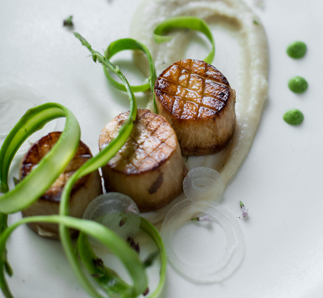 Wicked Healthy Scallops