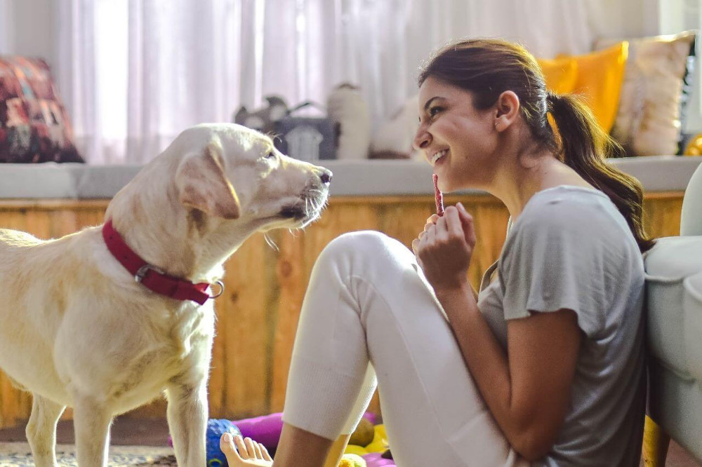 Award-Winning Bollywood Actor is Opening an Animal Shelter Just Outside Mumbai