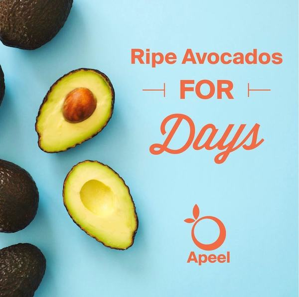 Apeel Avocados