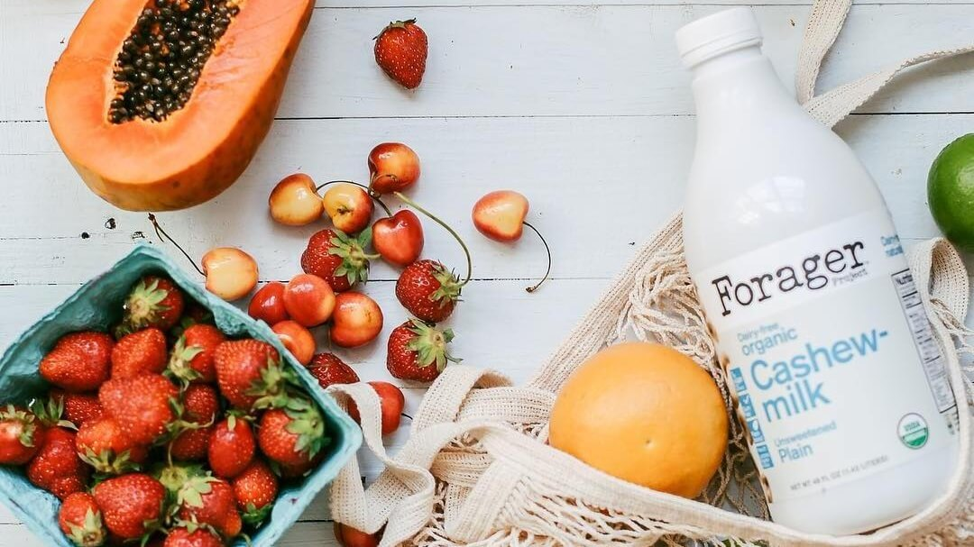 Forager Project Launches Vegan Coconut-Cashew Milk and Yogurt