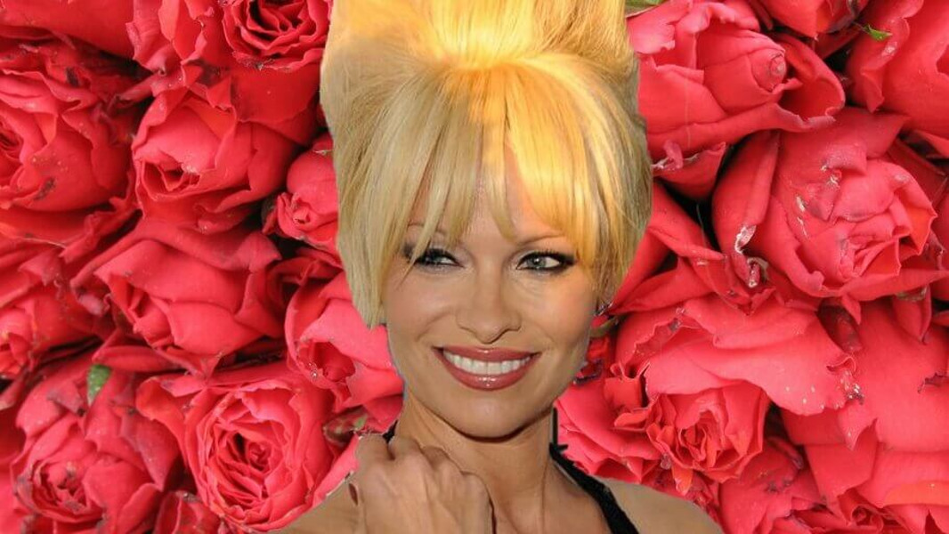 Vegan Celebrity Pamela Anderson Claims Plant-Based Diet is an 'Aphrodisiac'