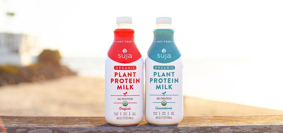 suja plant protein milk