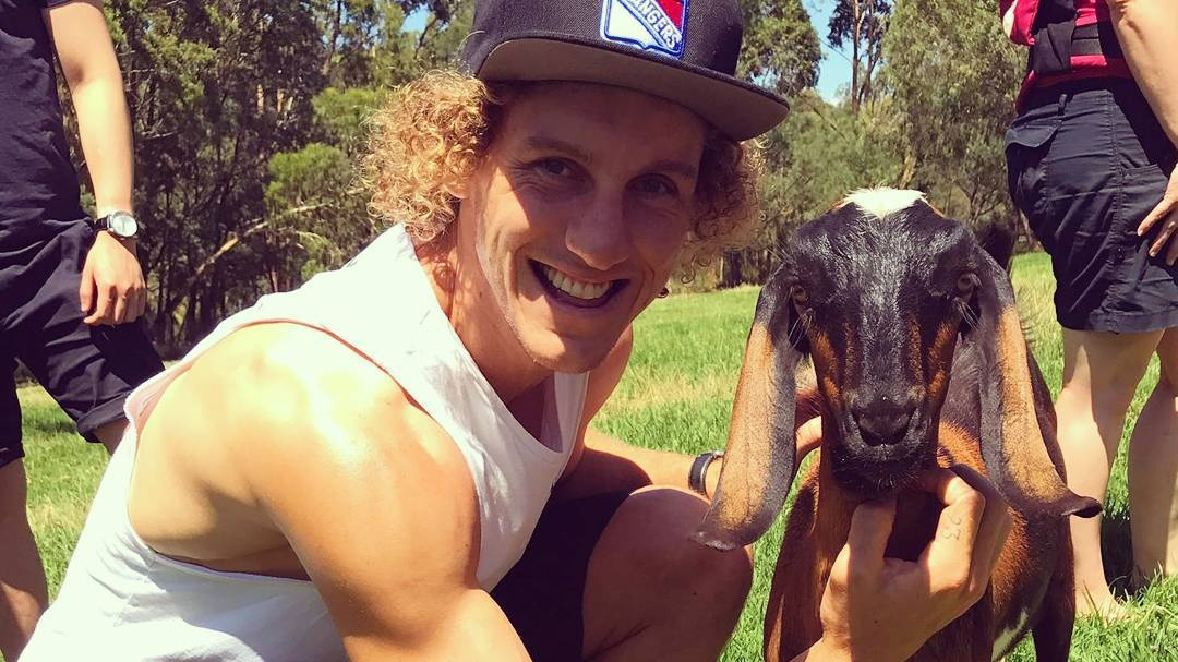 Vegan Magpies Footballer Chris Mayne 'Doesn't Have a Mean Bone In His Body'