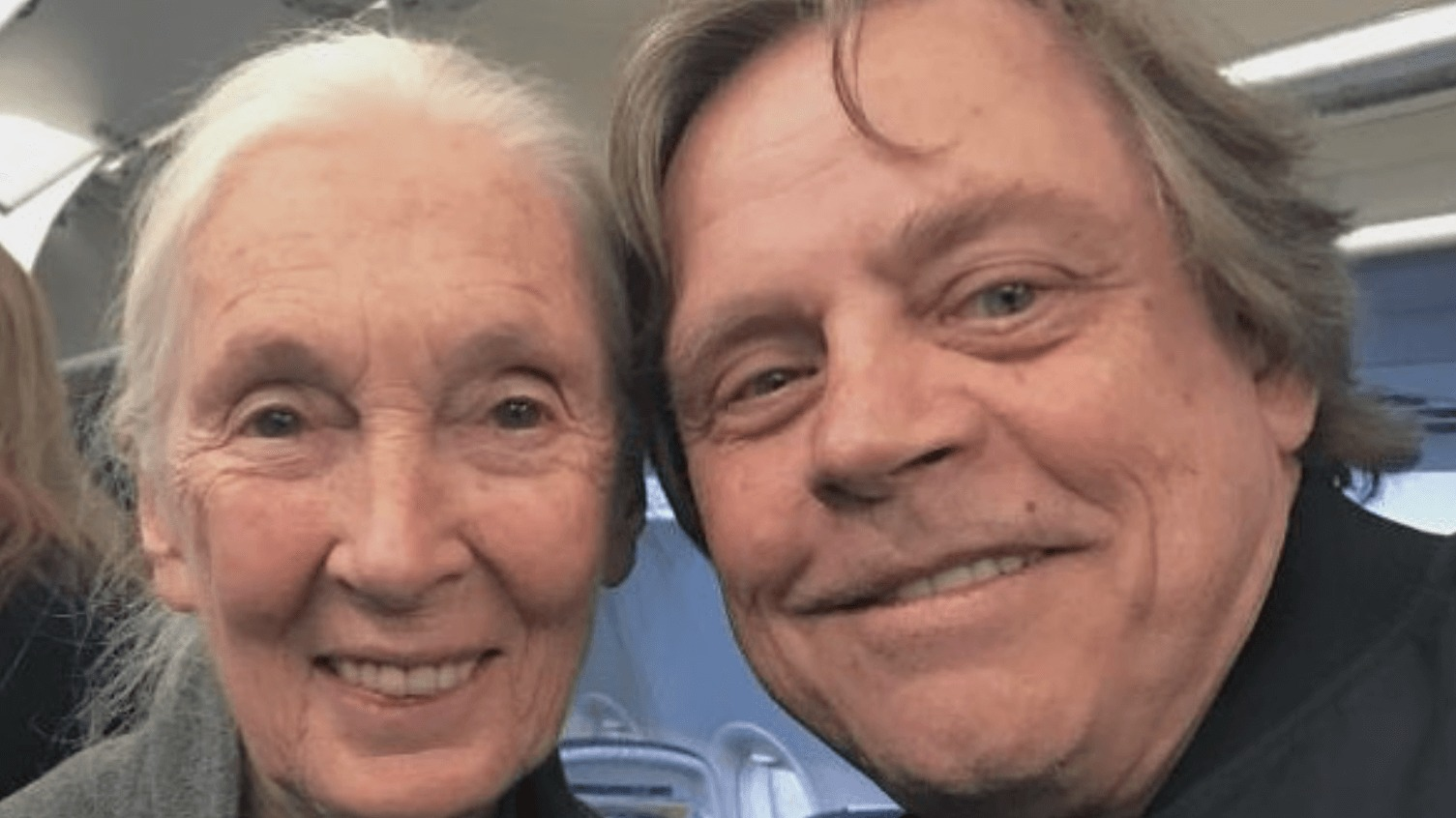 'Star Wars' Actor Mark Hamill Helps Conservationist Jane Goodall Defend All the Chimps in the Galaxy