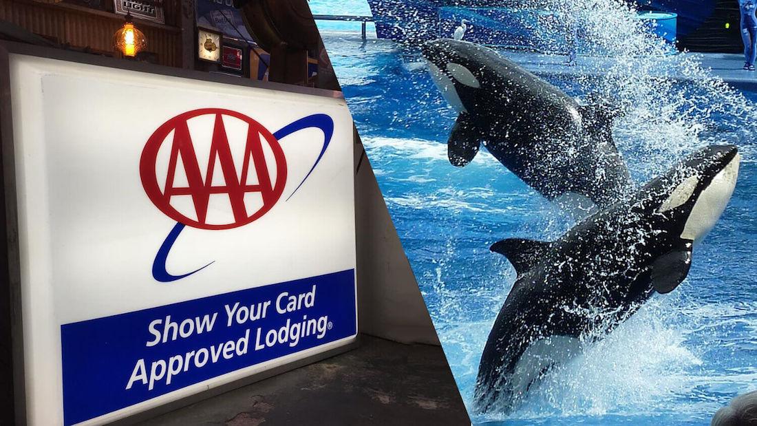Major Automotive Club AAA Arizona Cuts Ties With SeaWorld Over Marine Mammal Captivity