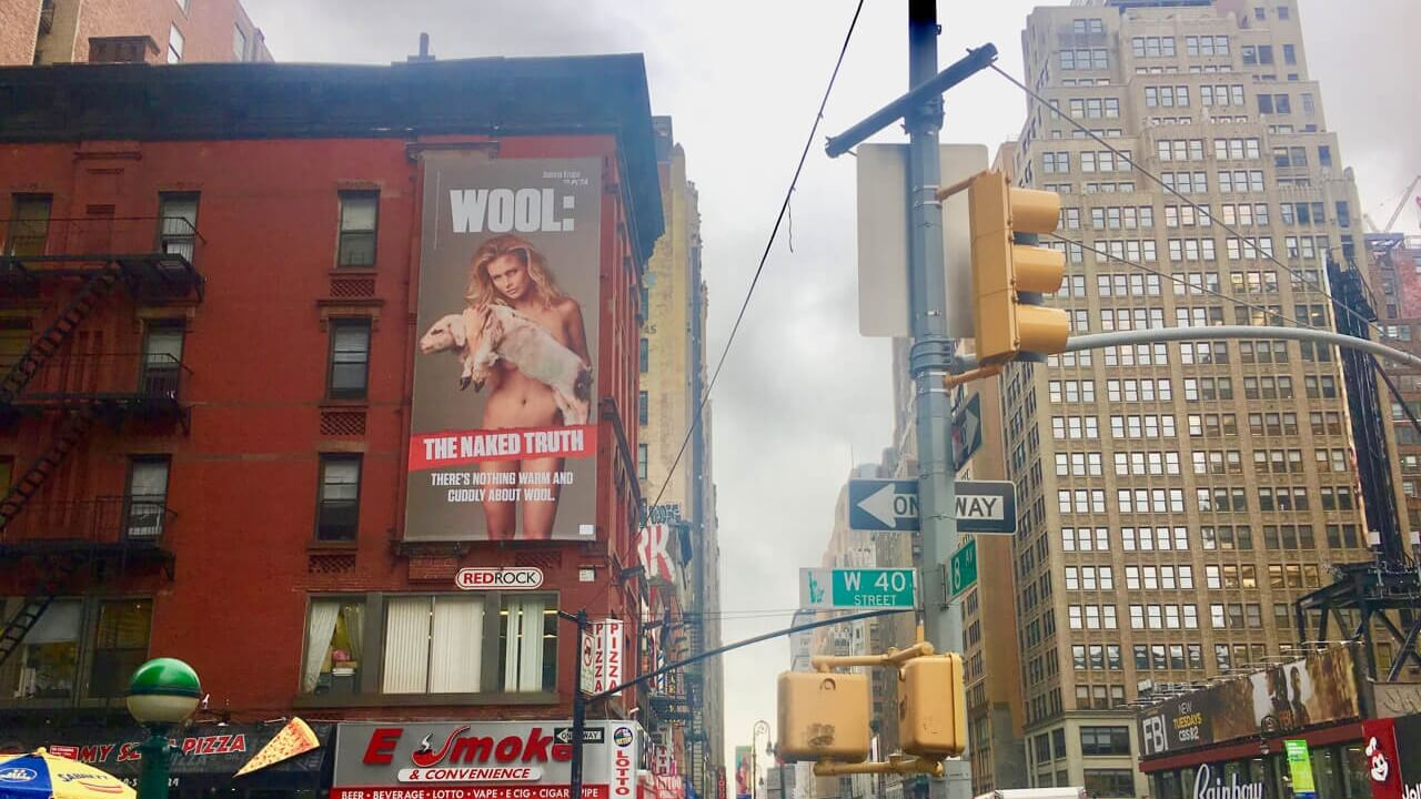 'Real Housewife' Joanna Krupa's New Anti-Wool Times Square Billboard Targets Forever 21