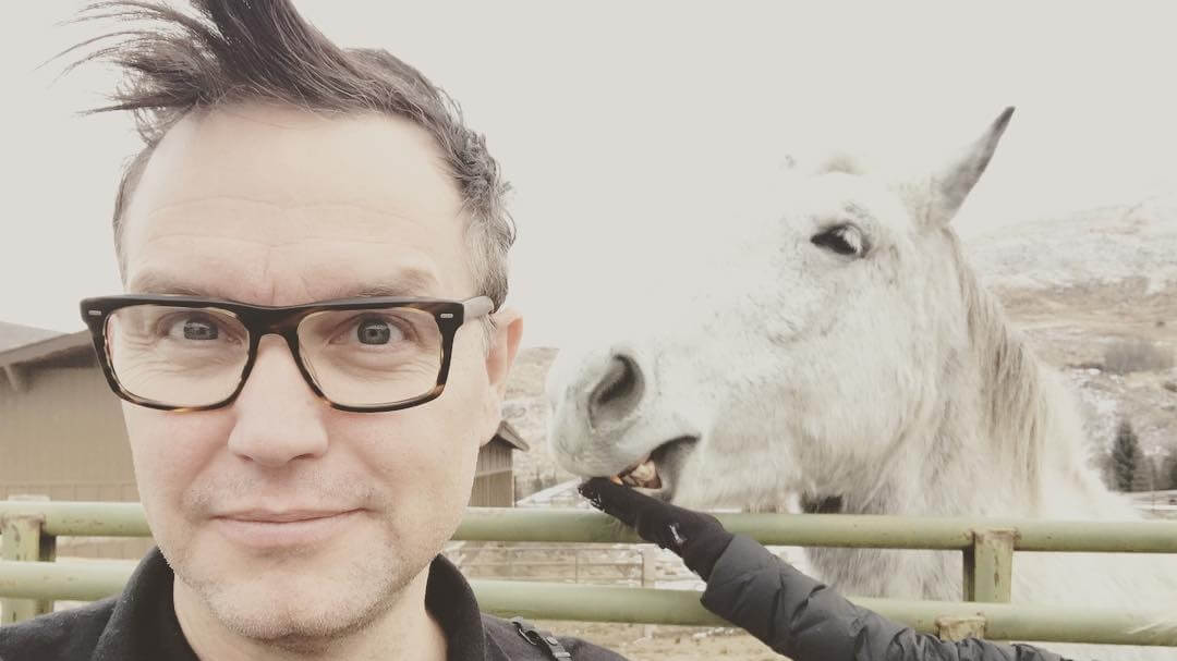 Vegan Blink 182 Bassist Mark Hoppus Believes Exploiting Cows For Food Is Hypocritical