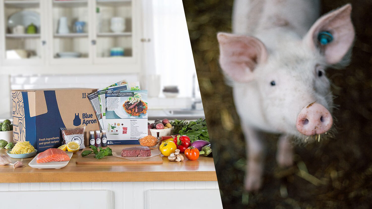 Meal Kit Company Blue Apron to Ditch Gestation Crates for Mother Pigs