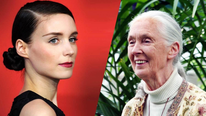 Vegan Celeb Rooney Mara's 'Beauty Icon' Is Chimpanzee Conservationist Jane Goodall