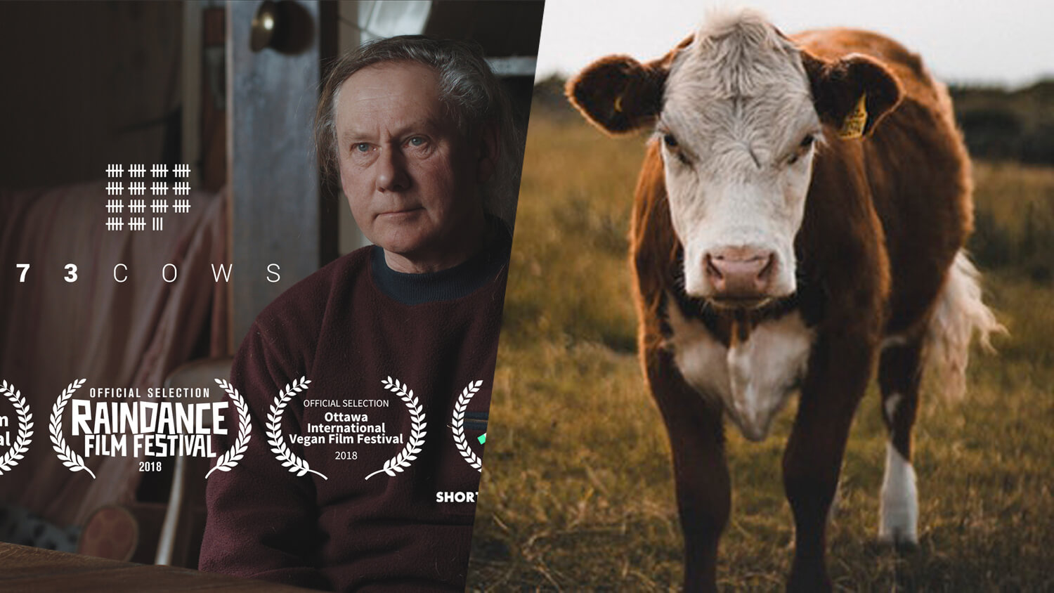 Documentary on Farmer Who Spares Cows From Slaughter Wins BAFTA Award
