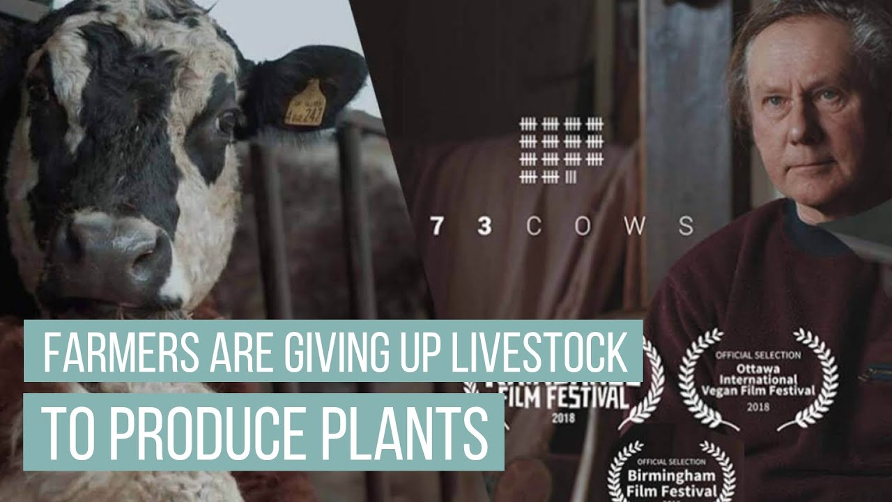 Why Farmers Are Giving Up Livestock To Produce Plants