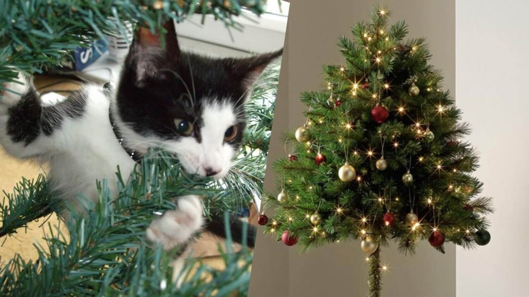 Christmas Trees Images.Argos Just Released A Christmas Tree For Cat Owners Livekindly