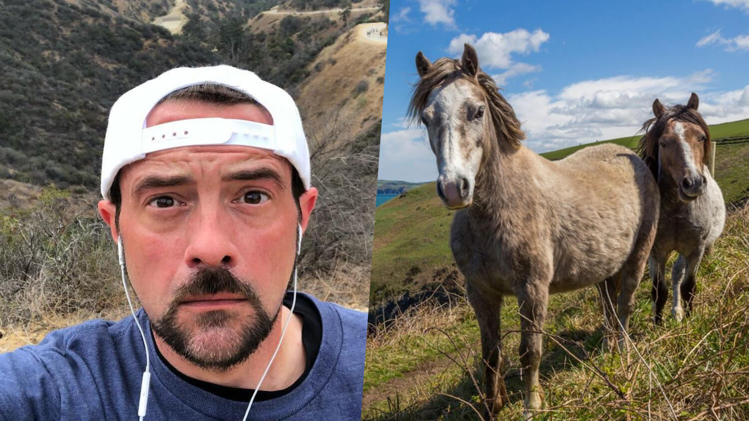 Vegan Filmmaker Kevin Smith Helps Rescue Horses From California's Malibu Woolsey Fire