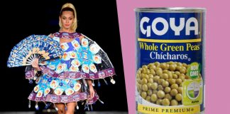 Miami Fashion Show Featured Vegan Clothes Made From Goya's Rice and Beans
