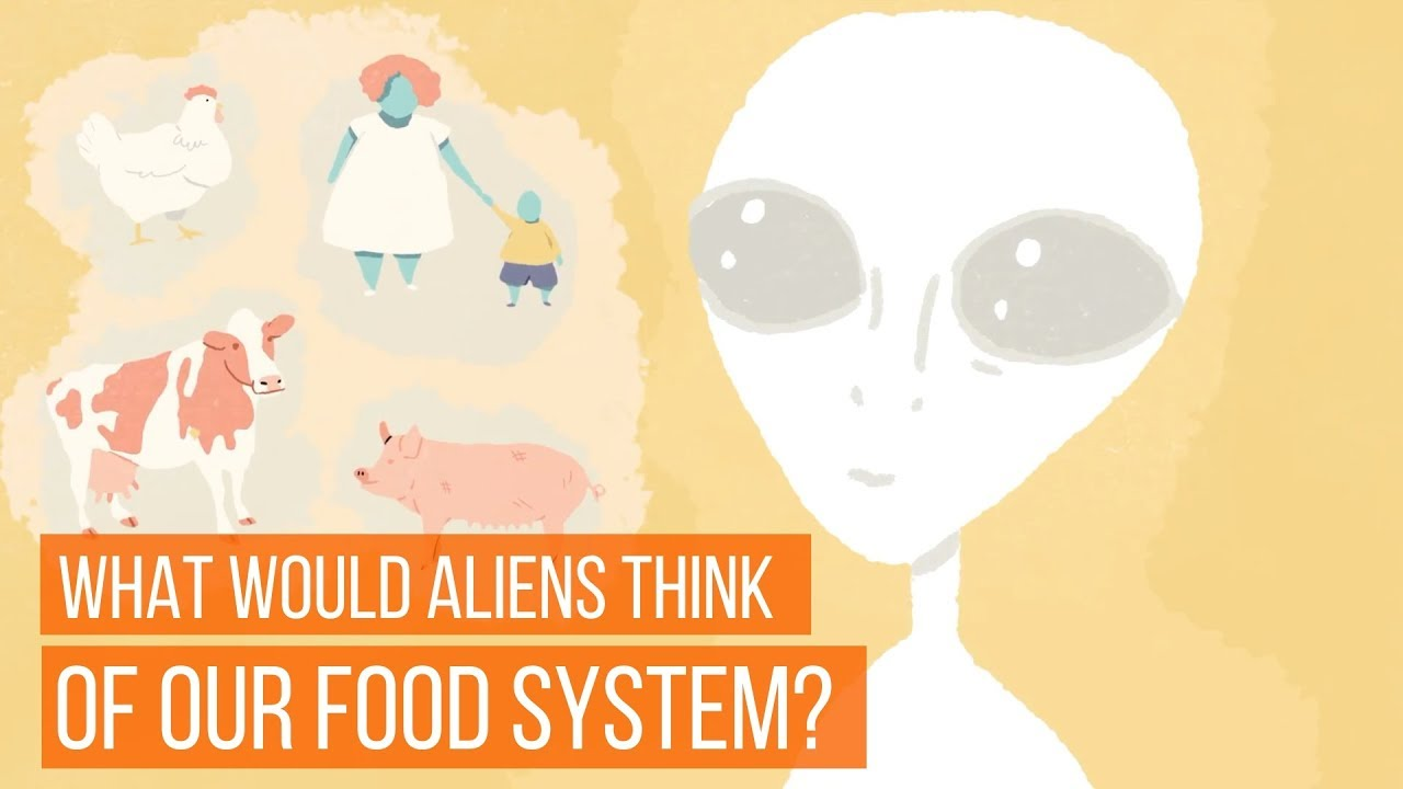 What Would Aliens Think Of Our Animal-Based Food System?
