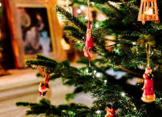 5 Simple and Creative Ways to Upcycle Your Christmas Tree