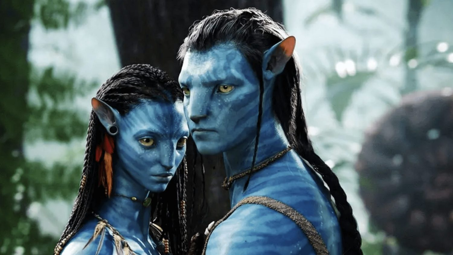 James Cameron's 'Avatar' Sequel Productions Only Serve Vegan Food On Set