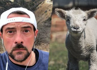 Farm Sanctuary Names Rescued Lambs After Vegan Celebs Kevin and Harley Quinn Smith