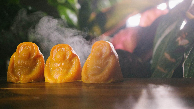 LUSH Launches Vegan Palm Oil-Free Orangutan-Shaped Soap for Rainforest Preservation