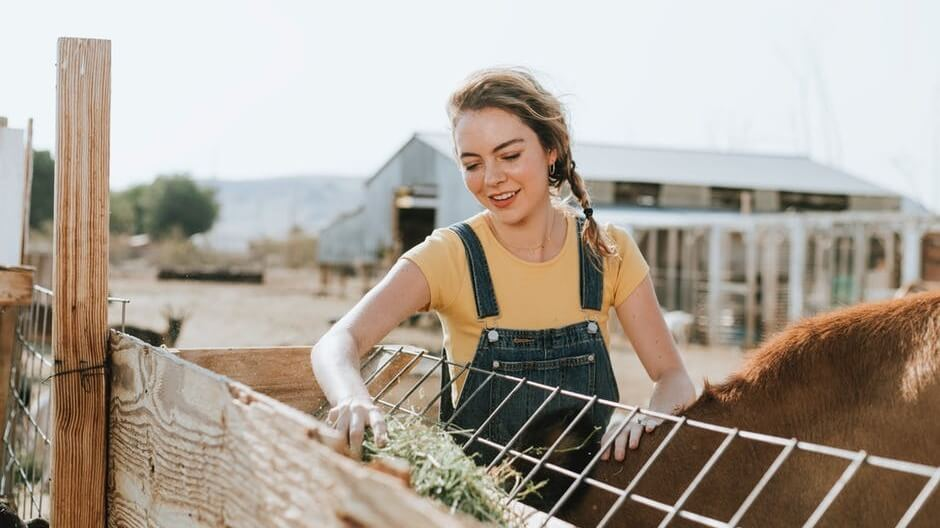 Free From Harm Website Chronicles Meat and Dairy Farmers Who Turn Vegan