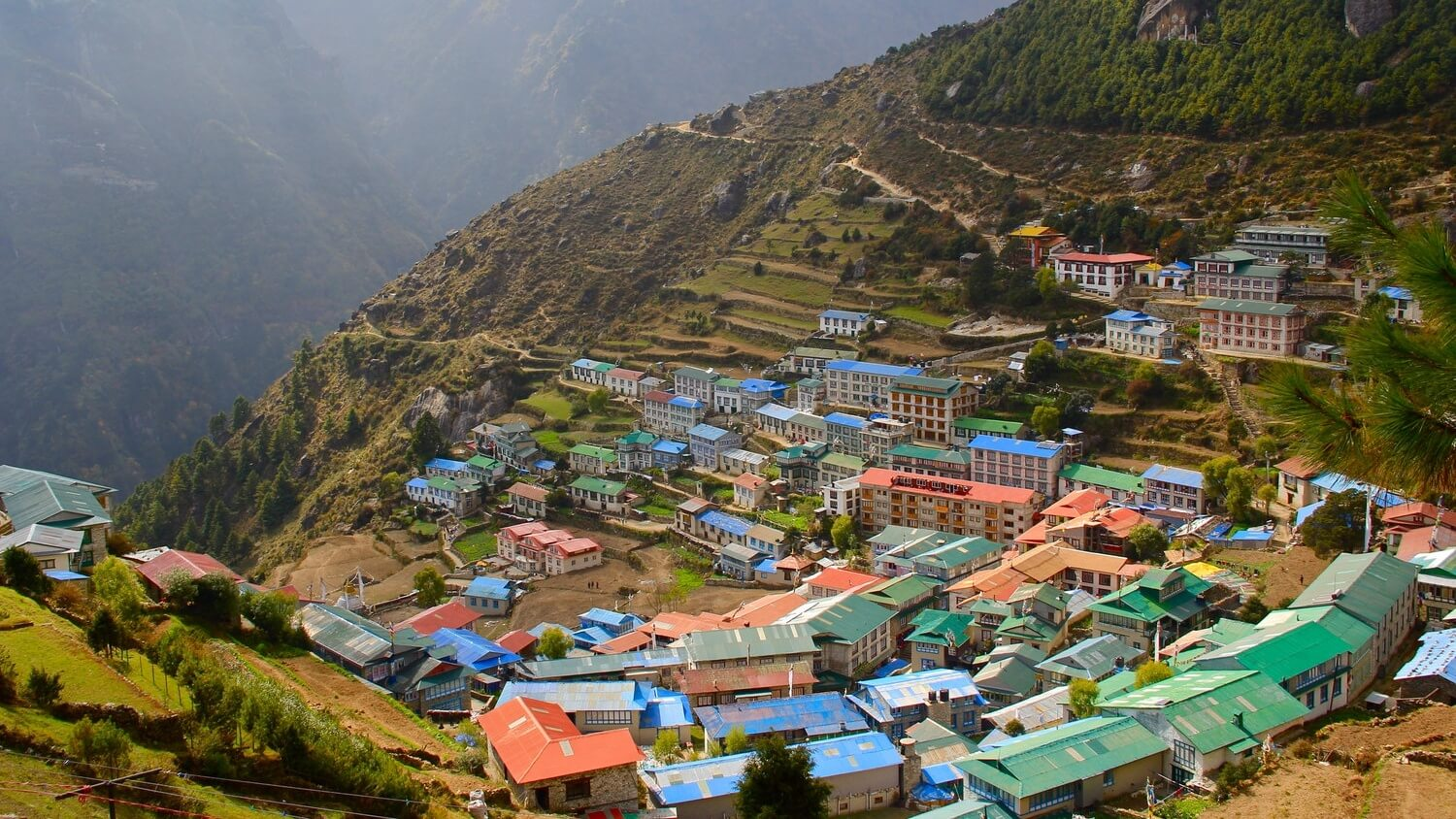 5 Travel Tips for Finding Vegan Food Options in Nepal