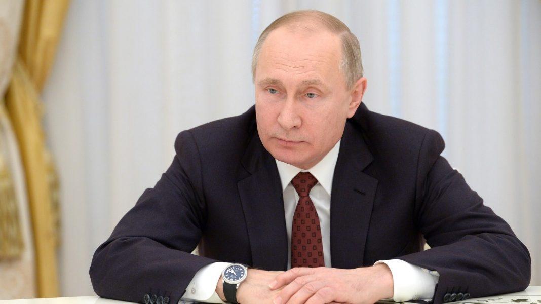 Vladimir Putin Bans Animal Cruelty In Russia