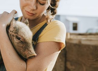 I Was Never An 'Animal Person' But I Still Went Vegan