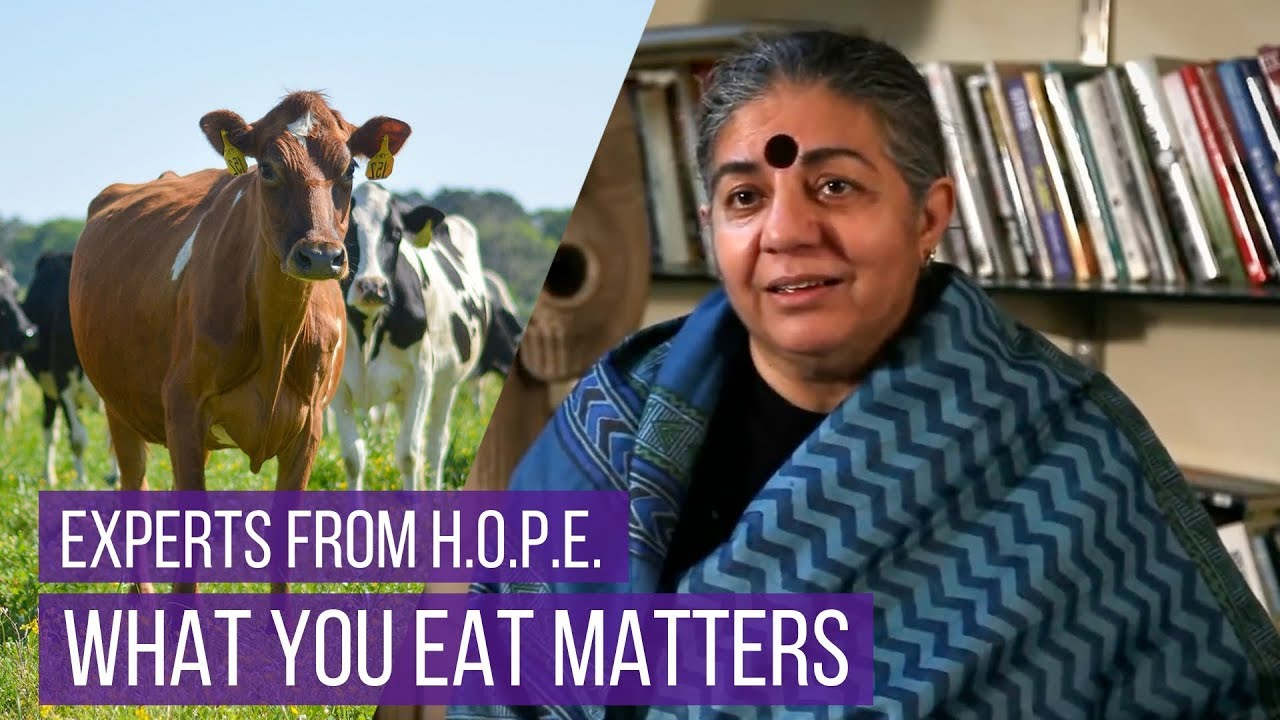 What You Eat Matters - Interview With Experts From The Documentary, H.O.P.E