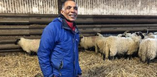 This Man Was a Lamb Farmer for 47 Years, Now He Wants to End the Industry