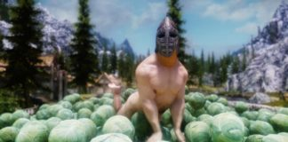 RPG Player Completes 'Skyrim' as a Vegan Character