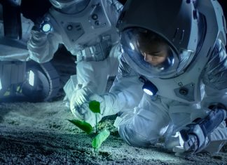 International Space Station Will Be Growing Vegan Protein in Space By 2021