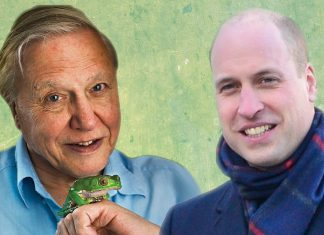 This Is How Prince William and David Attenborough Plan to Save the Planet