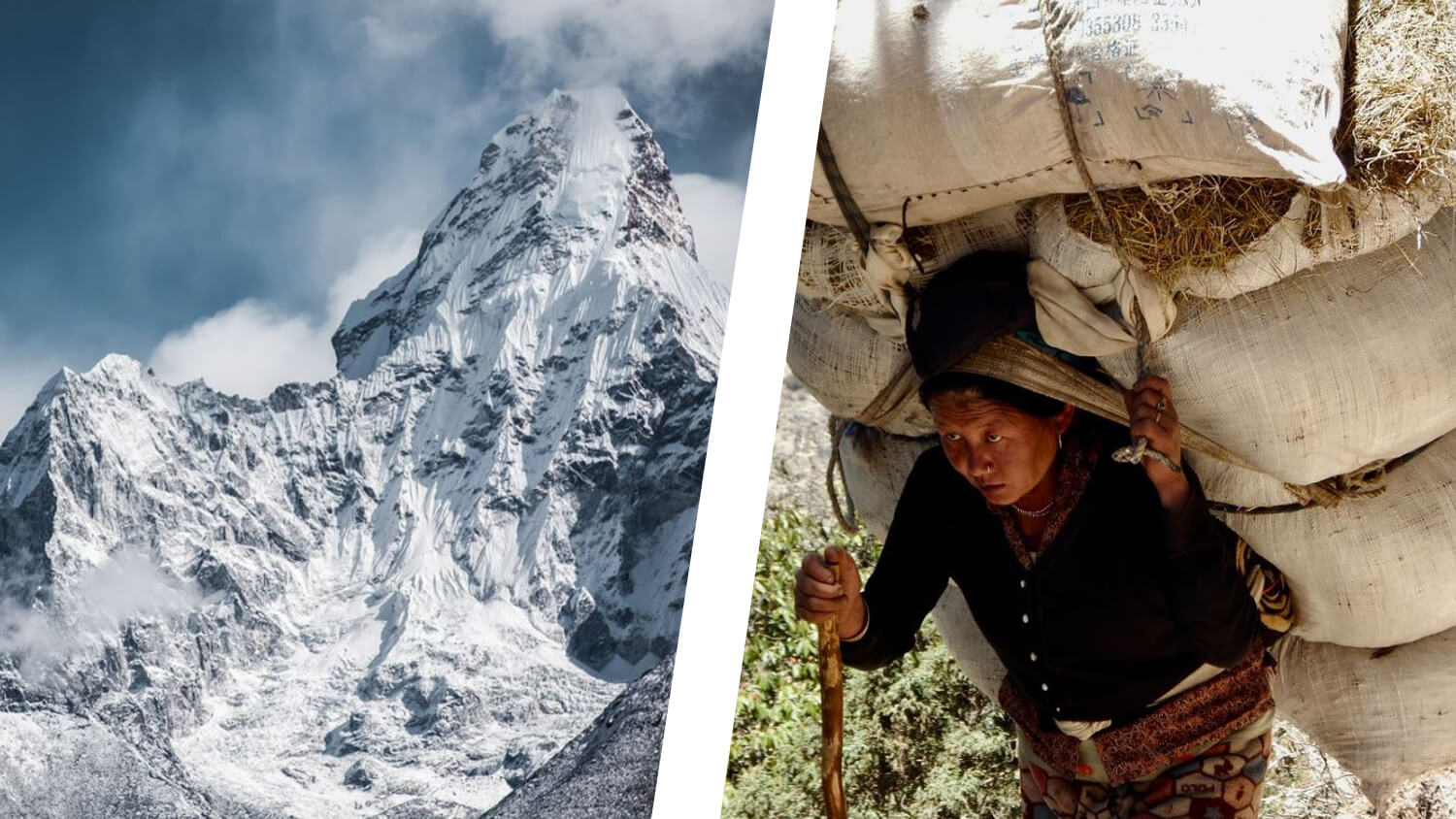 Sherpas are Growing Vegetable Gardens at the Base of Mt. Everest