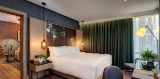 Hilton Hotel Creates Vegan Guest Room With Soy-Silk Curtains and Pineapple Leather