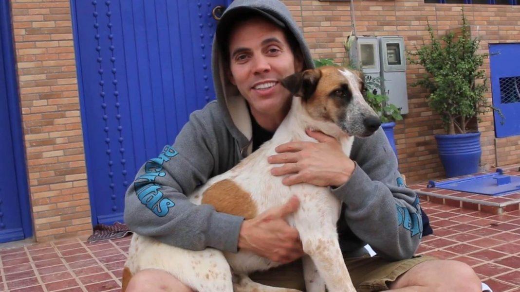 Vegan Celeb Steve-O to Open Animal Sanctuary