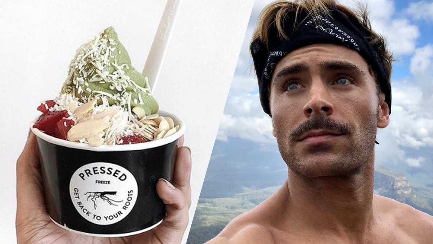 This Is the Vegan Ice Cream Zac Efron Had to Have After Surgery