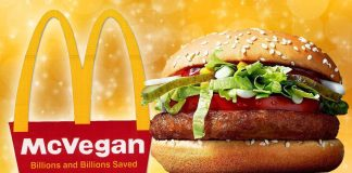 McDonald's to Launch New Vegan Options in Australia