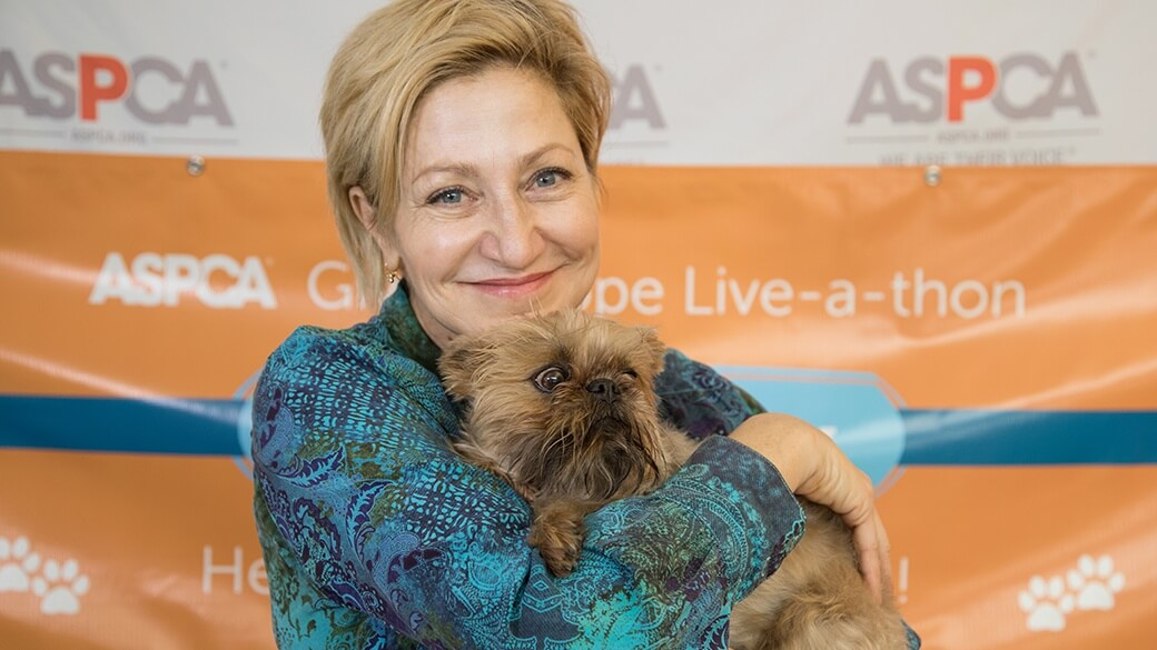 Edie Falco Is Urging New York to Ban Puppy Mills