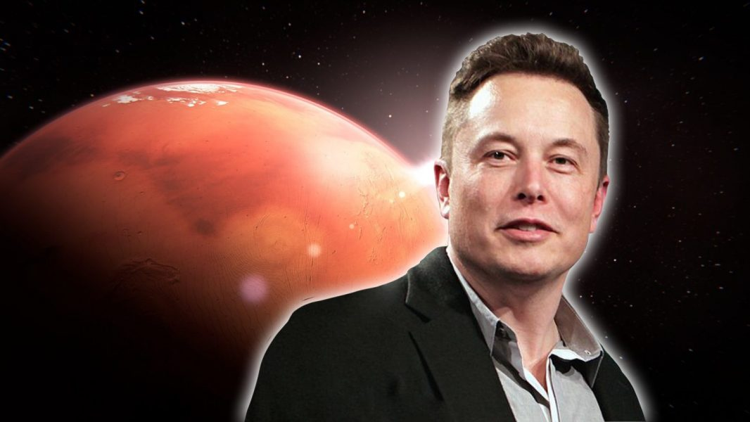 5 Ways Elon Musk Is Making the Universe More Vegan
